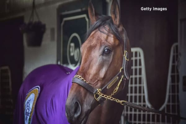 Nyquist named the favorite to win Kentucky Derby