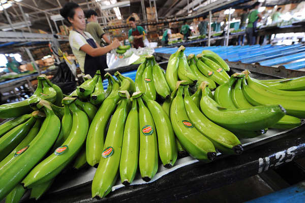 Workers pack bananas at the Tagum Agricultural Development Co. plant in Davao del Norte on Mindanao in April 2008.