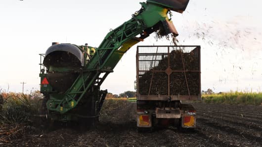 A harvester loads a truck with sugarcane at a plantation