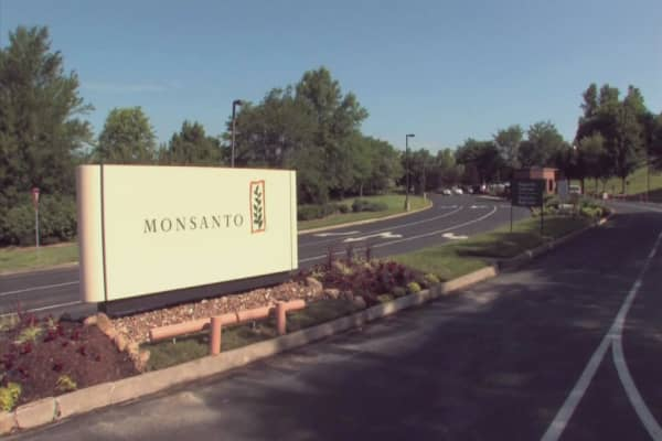 Monsanto stock up on takeover chatter