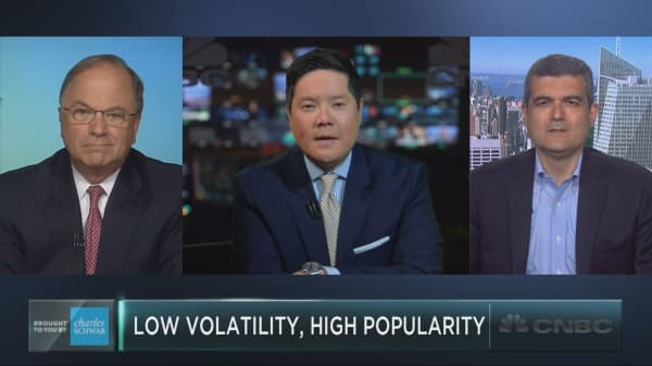 A close look at the hot low-volatility trend