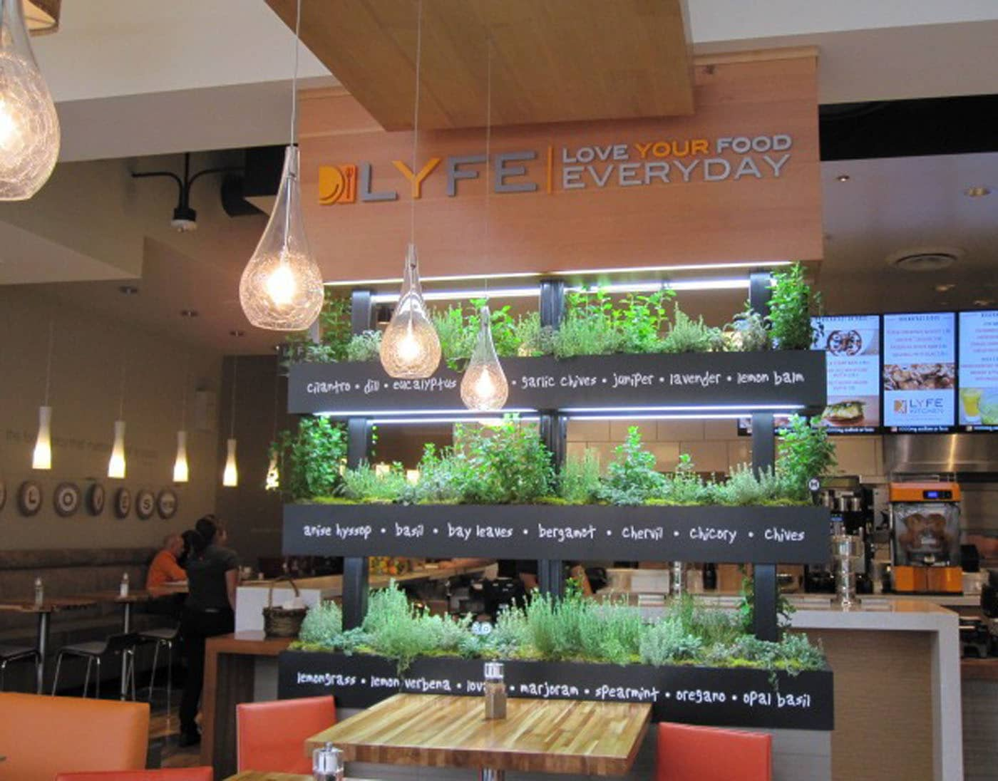 lyfe in the fast food lane: alums pioneer a new type of restaurant