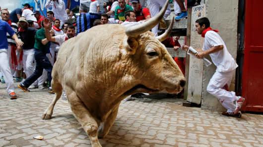 Bulls running