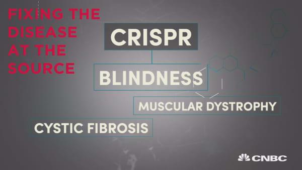 Explaining CRISPR