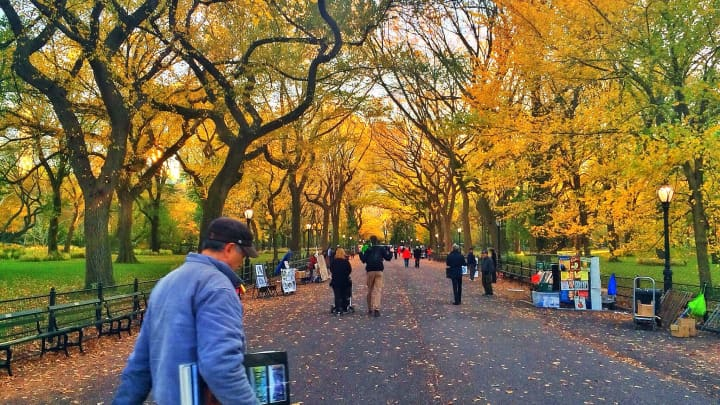 Central Park, changing leaves in the fall