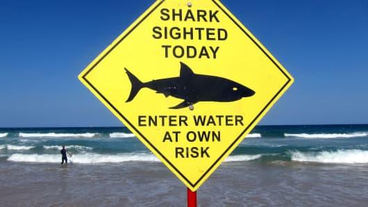 Fear risk surfing