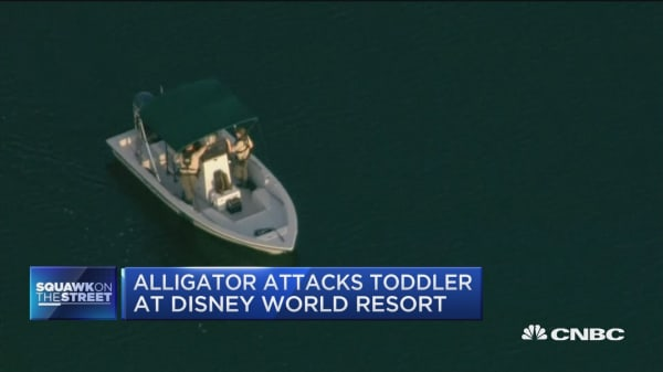Alligator attacks toddler