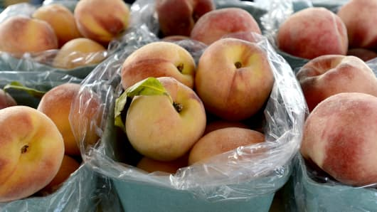 Peaches grown at Snell Family Farm in Buxton and sold at the Farmers Market at Monument Square in Portland, Maine