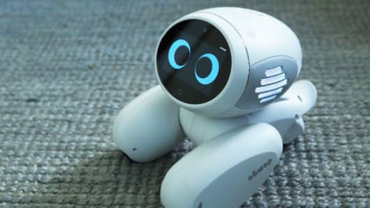 Domgy, an artificial intelligence-powered dog.