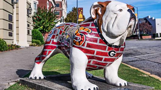 University of Georgia Bulldog sculpture
