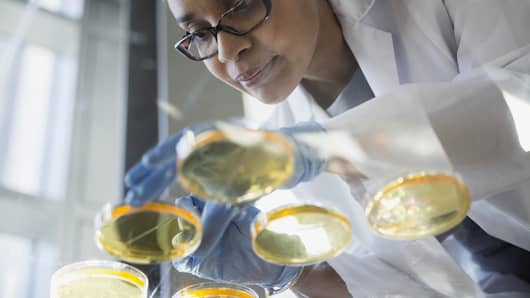 Scientist in a lab over petri dishes