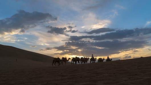 Tour guide rides on camel, walking on the desert at sunset. The Mingsha Shan desert (Mount Mingsha) is a part of the ancient silk road.