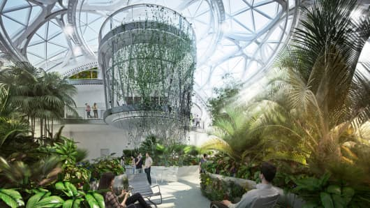 Renderings of the spheres at Amazon showing what the Amazon jungle will eventually look like. Amazon is building a complex at its Seattle headquarters where employees can sit by a creek, walk on suspension bridges and brainstorm in the boughs.