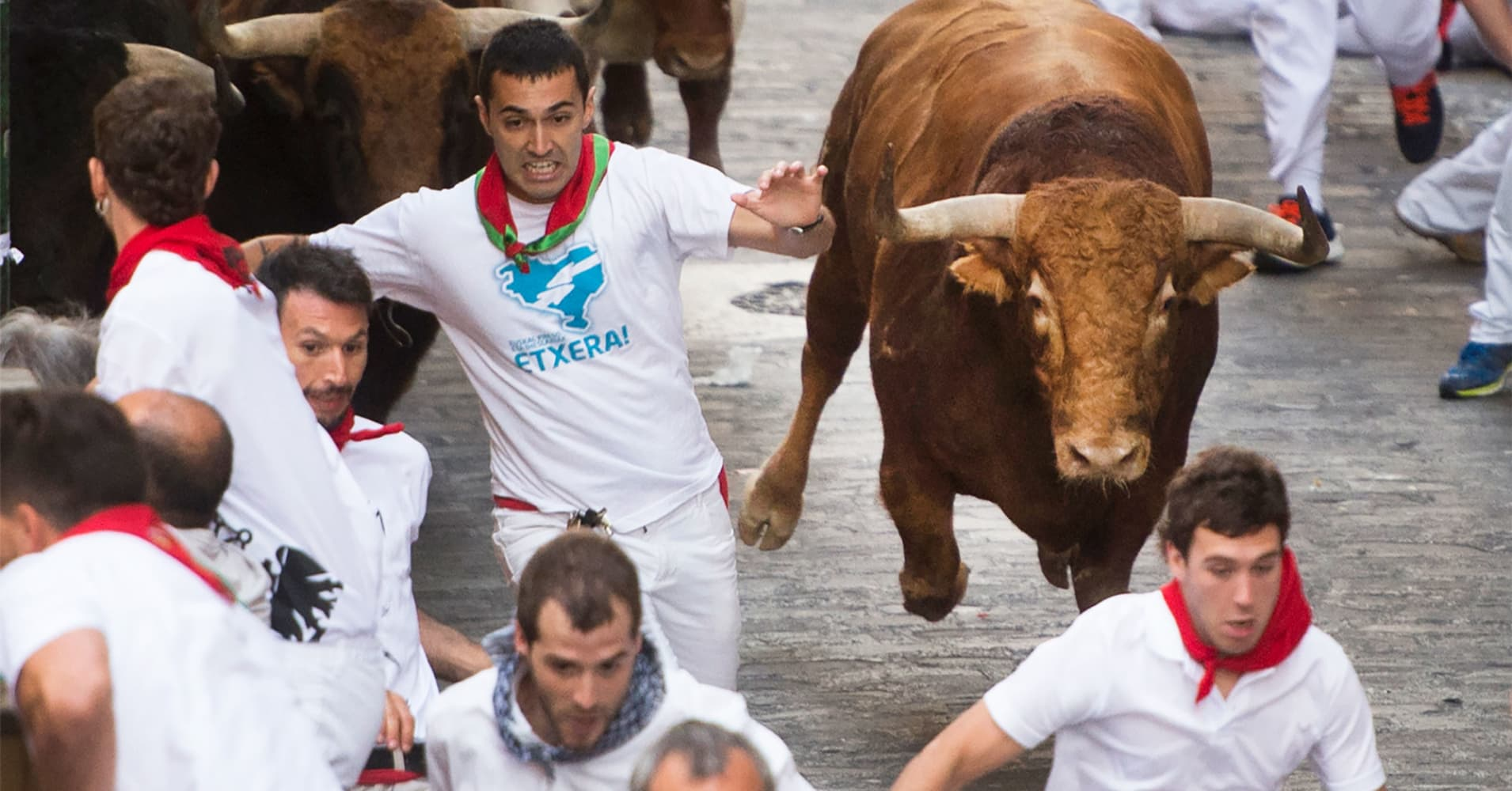 Analysts believe the bull market will set a record soon and these stocks are going to lead the way