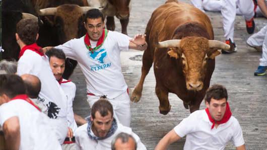 Bull Pamplona Spain
