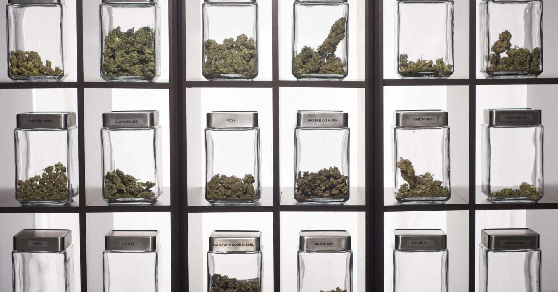 Irs said to be auditing colorado marijuana businesses falaconquin