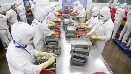 Employees work at Cafatex shrimp and Pangasius Catfish factory in Vietnam's southern Mekong delta province of Hau Giang August 28, 2015.