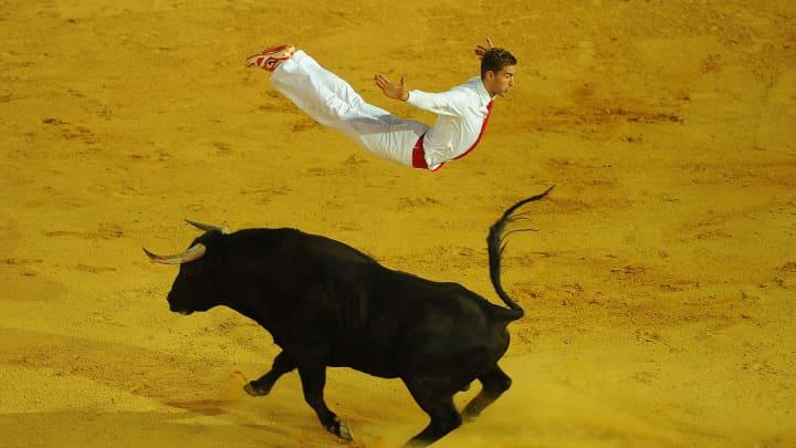 Charging bull stocks soar