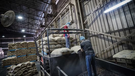 Workers pour cocoa beans into a floor trap for cleaning and micronizing at the Olam Cocoa factory on Friday, May 13, 2016.