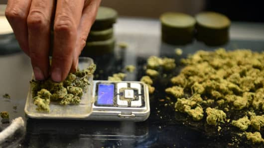 A vendor weighs buds for card-carrying medical marijuana patients.