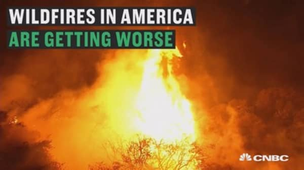 What the wildfires are costing us