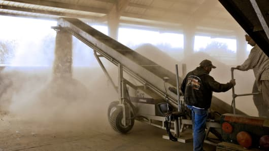 Almonds are cleaned in Wasco, California.