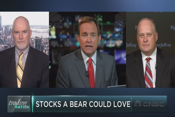 Seven stocks that even a bear could love