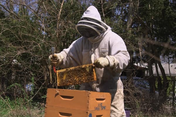 Akron Honey Company owner, Wesley Bright
