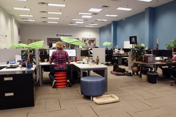 PetRelocation's headquarters in Austin, Texas.
