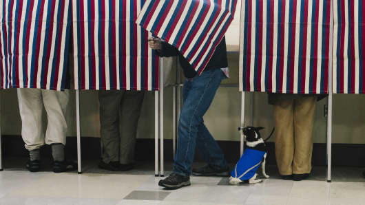 Bonnie MacInnis votes while her rat terrier/jack Russell mix named Theodore watches from the bottom of the voting booth at the Merrill Auditorium Rehearsal Hall in Portland, ME on Tuesday, November 4, 2014.