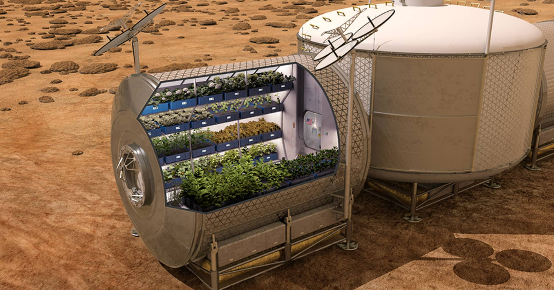 Strides in space farming may boost plan to build human