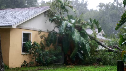 A downed tree from high winds rests against the side of a home in residential community after Hurricane Matthew passes through on October 7, 2016 in Ormond Beach, Florida.