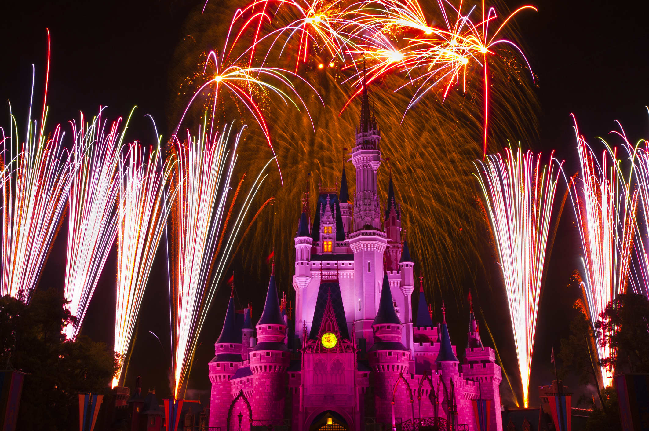 Disney Announces Magic Kingdom After Hours Wedding Package