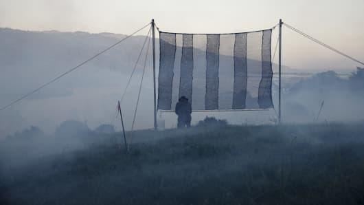 Fog Catcher
