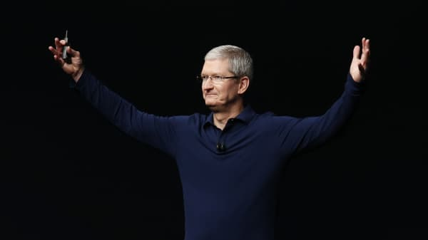 Apple Inc CEO Tim Cook
