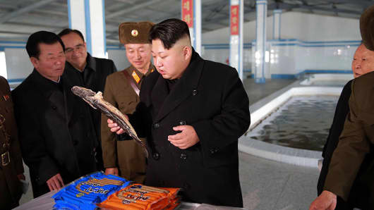 This undated picture released by North Korea's official Korean Central News Agency on December 12, 2015 shows North Korean leader Kim Jong-Un (C) inspecting the newly renovated May 9 catfish farm at an undisclosed location in North Korea.