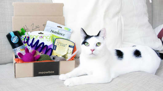 BarkBox/MeowBox
