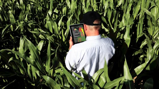 A farmer uses a tablet to access DuPont Pioneer's data analytics services.