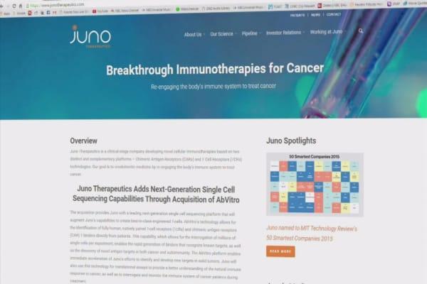 Juno Therapeutics stock slides after study kills patient