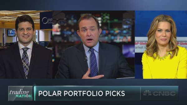 Goldman's polar portfolio picks
