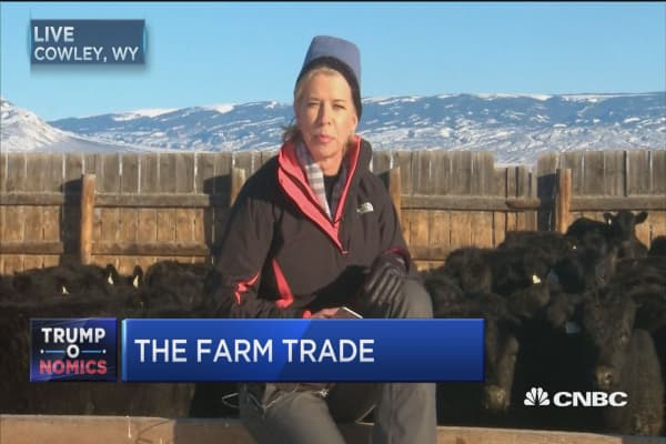 Trump and the farm trade