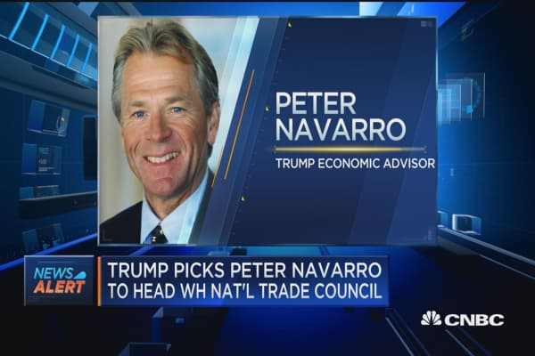 Trump picks Peter Navarro to head White House National Trade Council