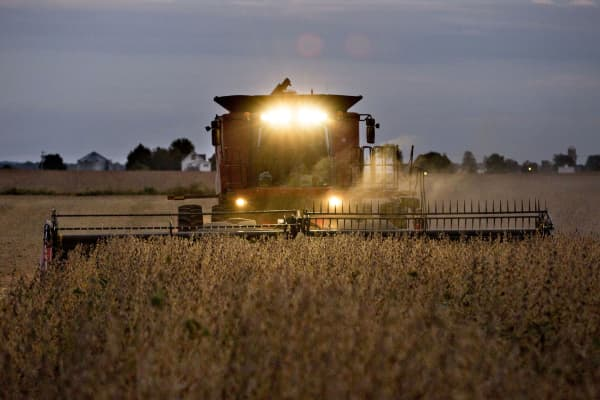 Soybeans are harvested near Princeton, Ill.