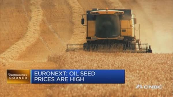 Elevated production weighs on wheat, corn prices: Euronext