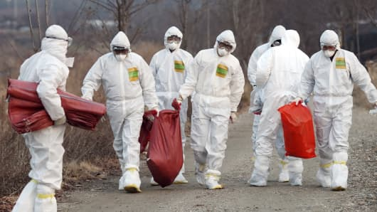 In this Monday, Dec. 26, 2016, photo, health officials wearing protective suits carry a sack c