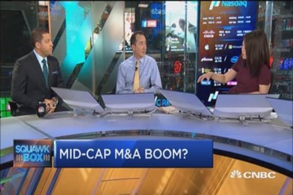 Repatriation favors mid-cap stocks: Pro