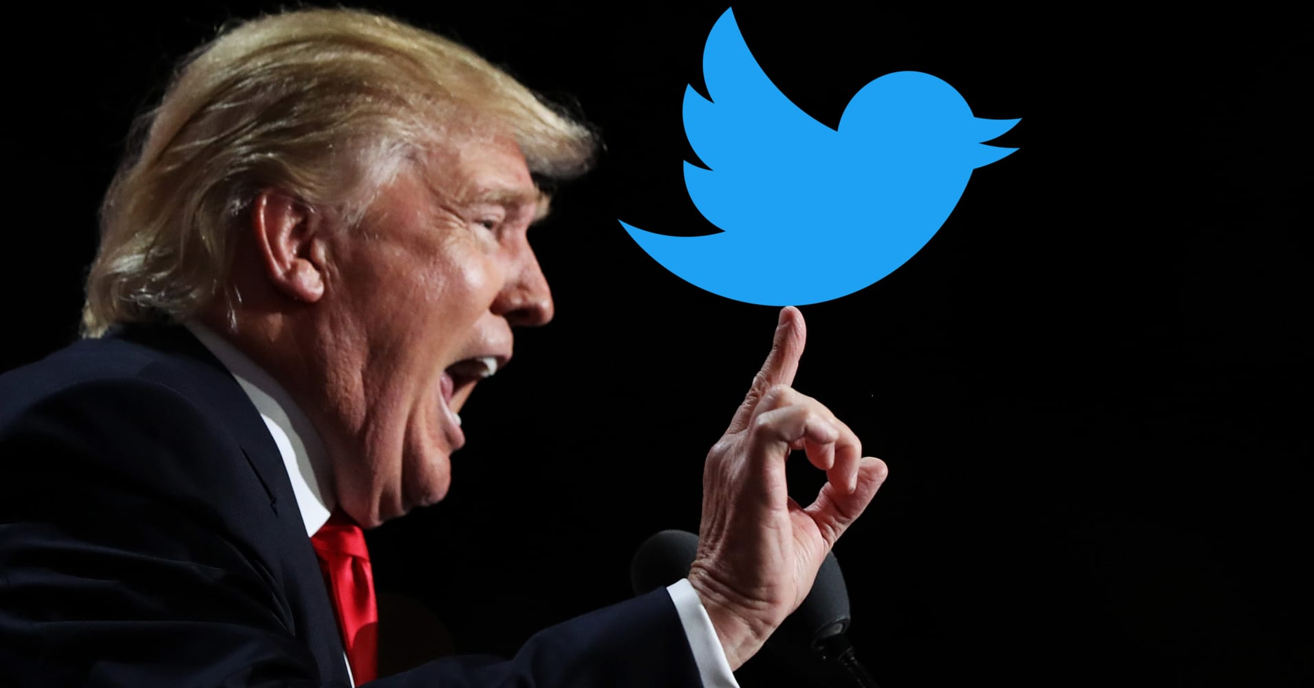 Image result for twitter lawsuit against trump