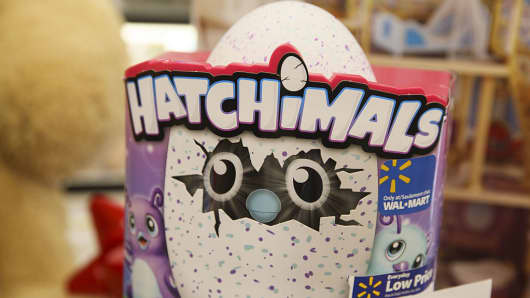 Hatchimals Hatching Egg toy