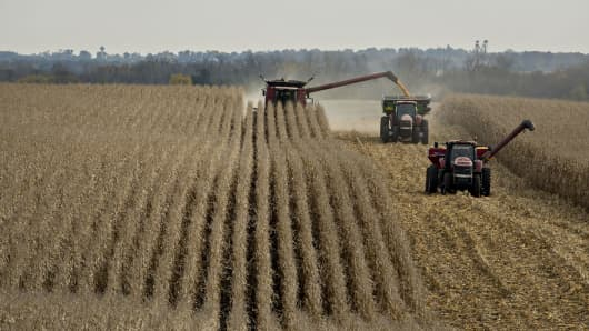 Corn is harvested in Sheffield, Illinois.