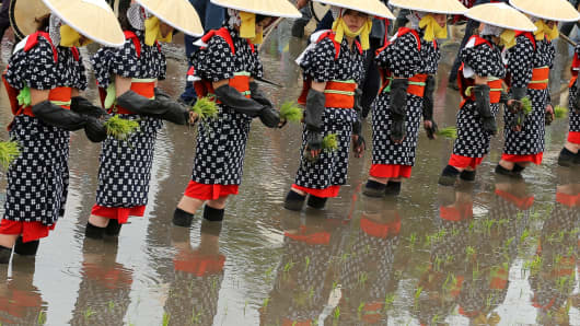 Local women dressed in 'Saotome' traditional rice planting costumes stand at the rice field during the 'Hanataue' rice planting ritual on June 5, 2016 in Kitahiroshima, Hiroshima, Japan.